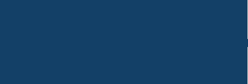 dlv-logo-retina-blue